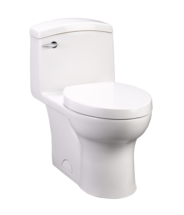 roycroft one piece toilet roycroft onepiece elongated toilet from dxv