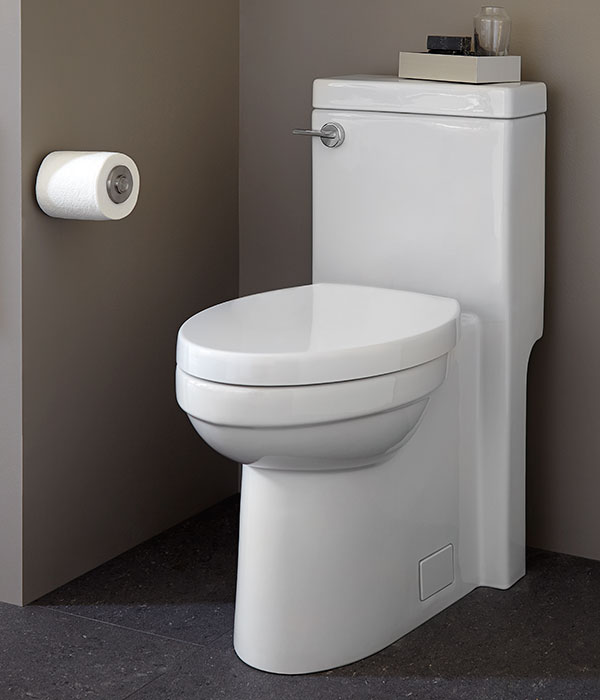 One Piece Toilet Seagram One Piece Elongated Toilet From Dxv