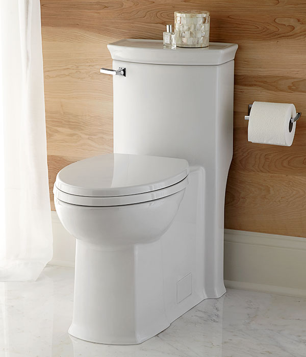 One Piece Toilet Wyatt One Piece Elongated Toilet From Dxv